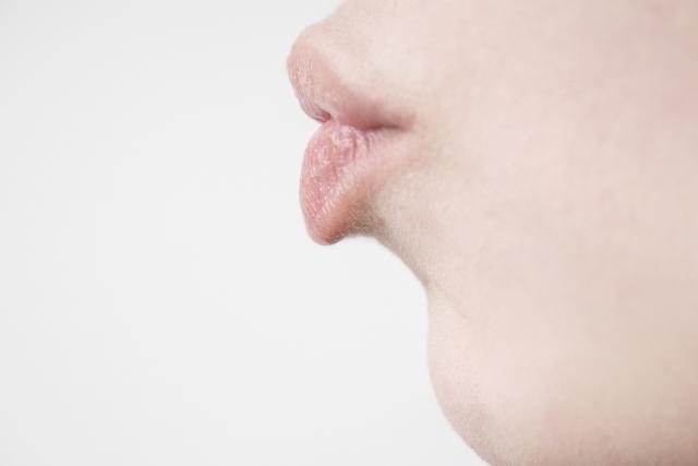 キスに旬の味をがあるの知ってましたか?