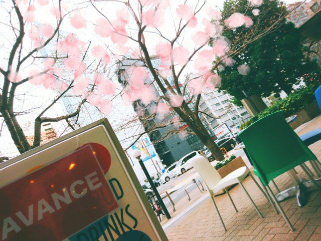 【現在24名】4月8日(日)お花見オフ会