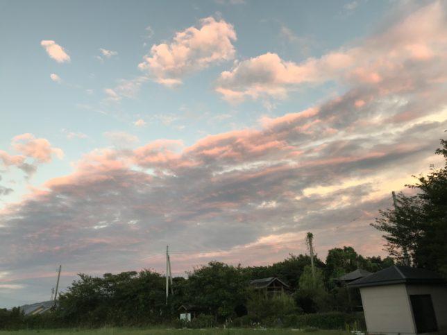 台風から一夜明けて…
