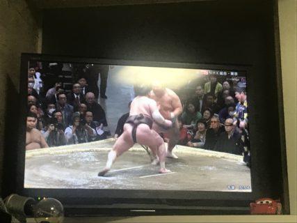 相撲を見に行きたい…